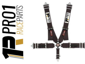 Pro1 Black Ratchet Camlock Race Belts